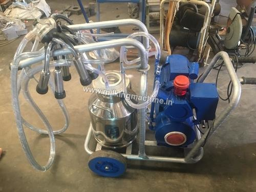 Milking Machines at Best Price