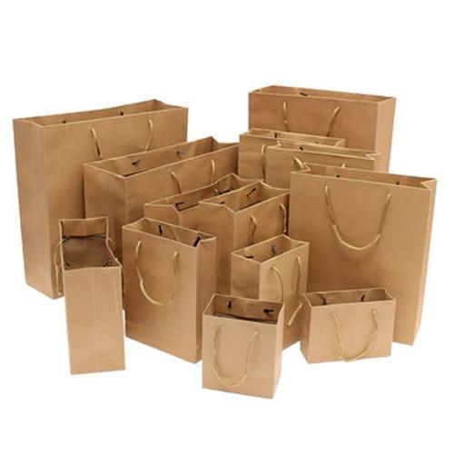 Paper Handle Bags