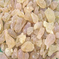 Boswellia Serrata Extract