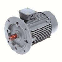 THREE PHASE SQUIRREL CAGE INDUCTION MOTORS