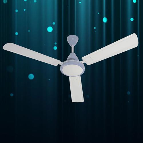 Polo Blue Ceiling Fan