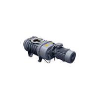Vacuum Booster Pumps