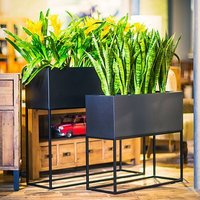 Brass Planter / Iron Planter