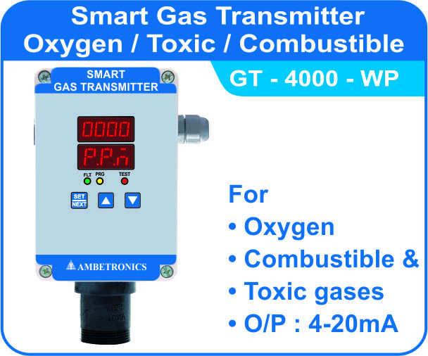 Combustible Gas Detector Combustible Leak Detector Make in India