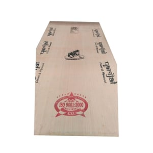 Pine Door Designer Plywood