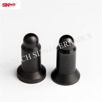 Non Conductive Ceramic Guide Pin for Projection Welding