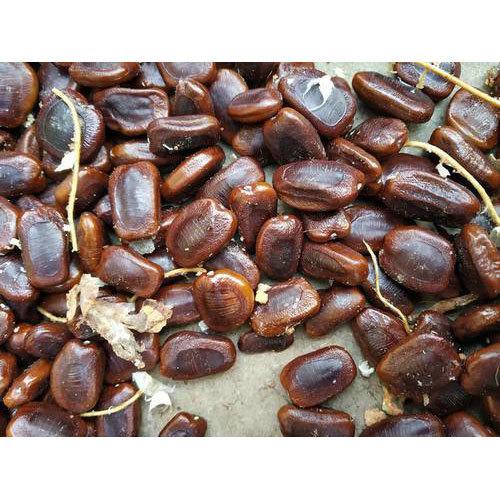 High Grade Tamarind Seed