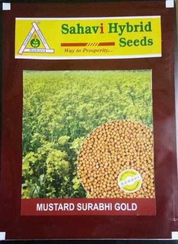 Mustard Surabhi Gold seeds
