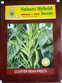 Cluster Bean Preeti