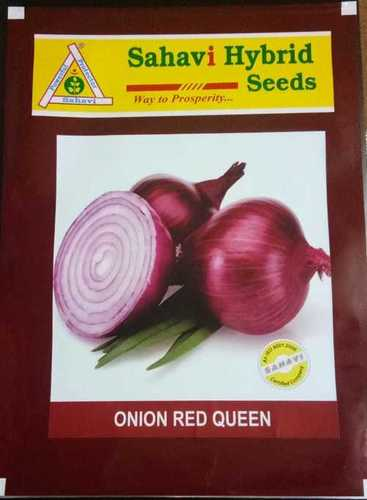 Onion Red Queen