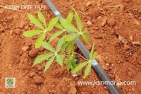 Drip Lateral Tape Irrigation