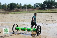 8 Row Plastic Rice Seeder