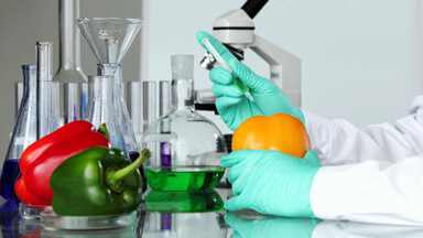 Food Testing Services