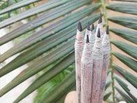 Black Velvet Pencil