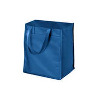 Laminated Polypropylene Bag