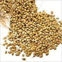 Whole And Split Coriander Seeds