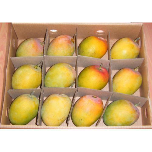 Plain Fruit Corrugated Box