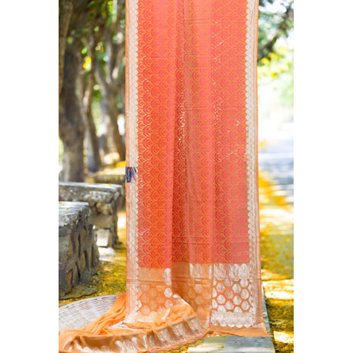 Ladies Chiffon Banarasi Saree