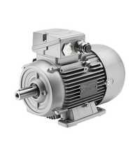 3 Phase IE2 Motor