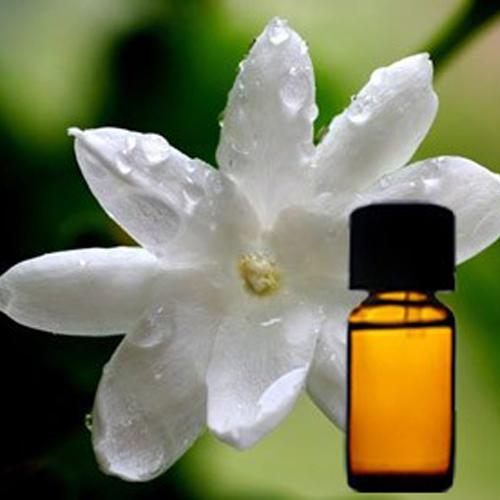 Jasmine Grandiflorum Floral Absolute Oil