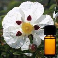 Labdanum Floral Absolute Oil