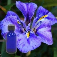 Orris Floral Absolute Oil