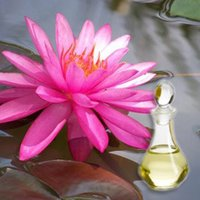 Pink Lotus Floral Absolute Oil