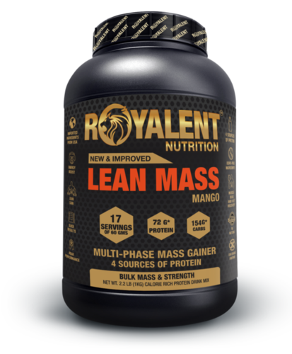 Lean Gainer Powder
