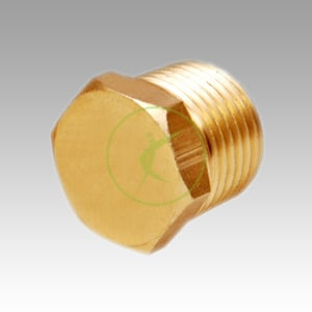 Brass Hex Pipe Plug
