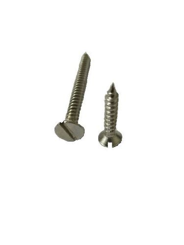 Stainless Steel Slotted Head Screws