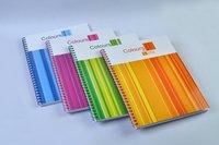 School Diaries