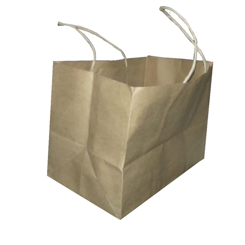 Loop Handle Plain Paper Bag