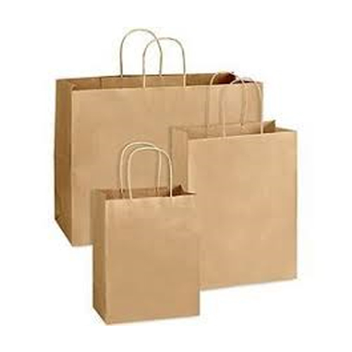 Loop Handle Paper Carry Bag