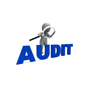 Tax Audit Service