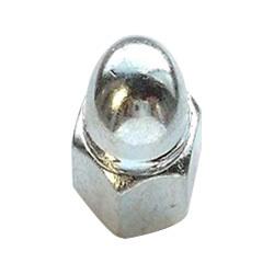 Stainless Steel Acorn Cap Nut