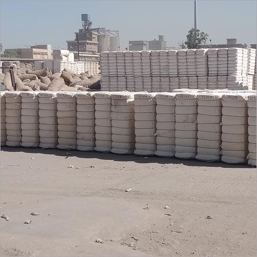 Giza 86 Cotton