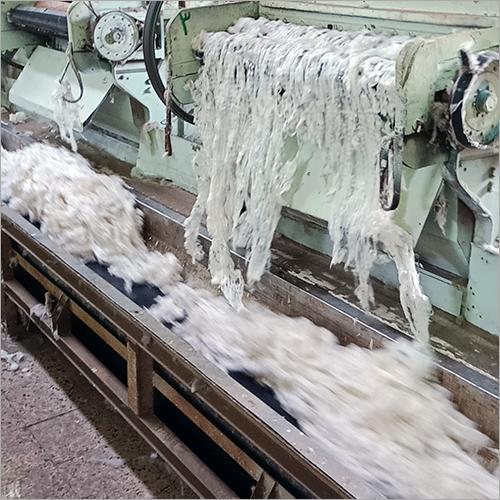 Giza 94 Cotton