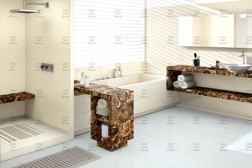 Petrified Wood Bathroom