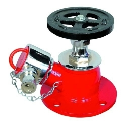 Fire Hydrant Valve SS