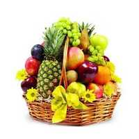 Fruits Bucket