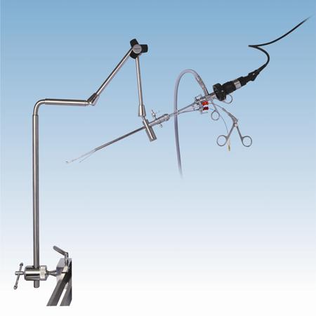 Endoscope Holding System