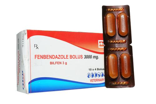 FENBNDAZOLE-3GM
