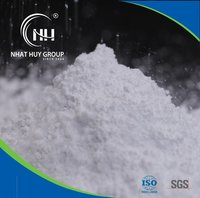 Vietnam Calcium Carbonate Powder from Purest White Limestone