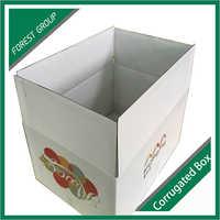 Fan Motor Carton Box Supplier