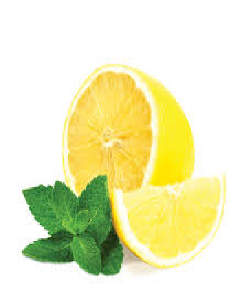 Lemon mint flavor