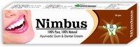 26Gm Nimbus Ayurvedic Tooth Paste