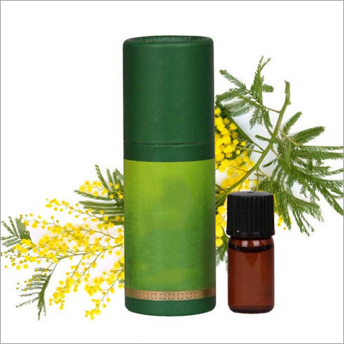 Mimosa Absolute Oil