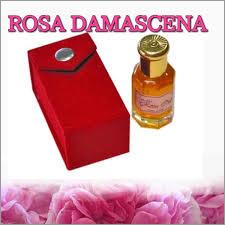 Rose Damascena Absolute Oil