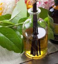 Gurjun Balsam Essential Oil