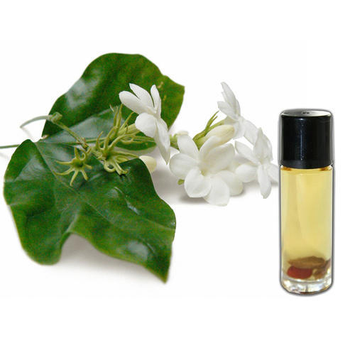 Jasmine Essential Oil Grandiflorum
